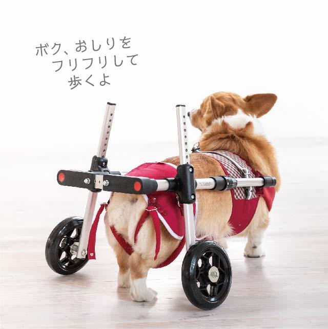 補助車 車椅子 犬